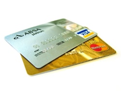 termite-pest-control-take-visa-master-cash